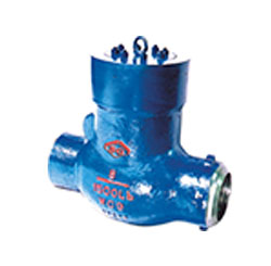 Pound grade rotating type check valve for power station