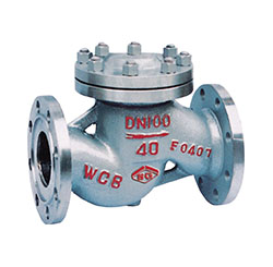 Lifting type check valve